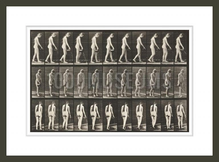 Nude woman walking and pouring water from a pitcher (Animal Locomotion, 1887, plate 42)