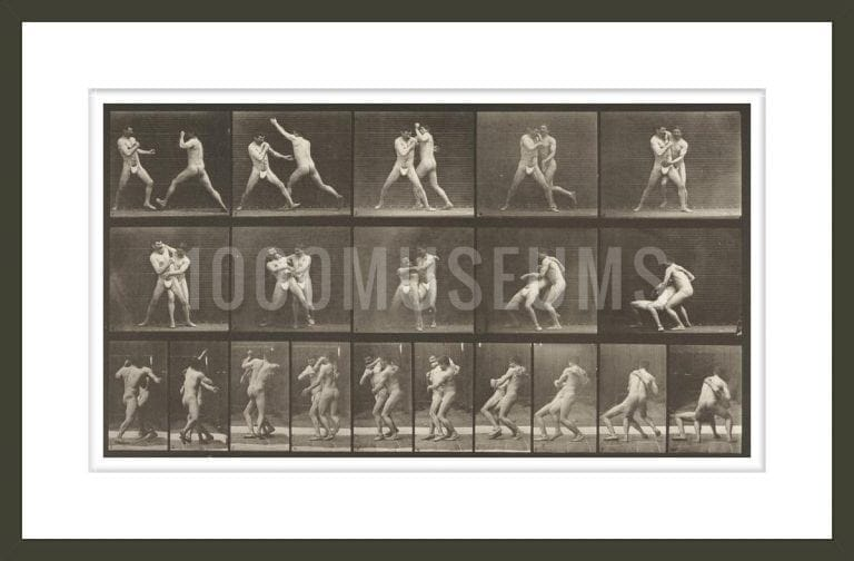 Two men boxing in thong underwear (Animal Locomotion, 1887, plate 331)