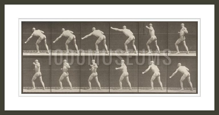 Nude man striking a blow with left hand (Animal Locomotion, 1887, plate 343)
