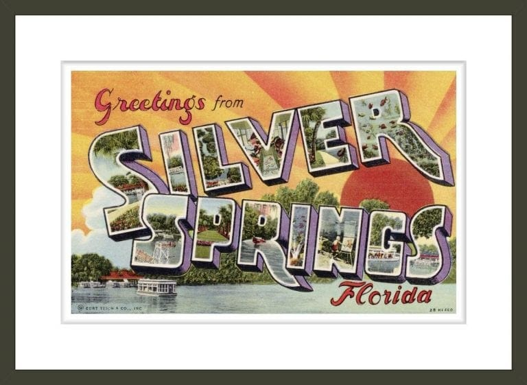 Greeting Card from Silver Springs, Florida