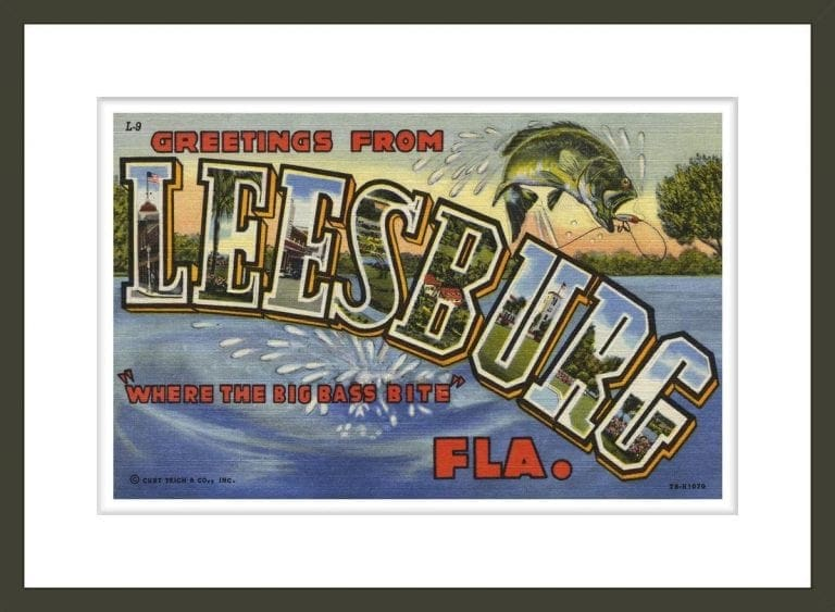 Greeting Card from Leesburg, Florida