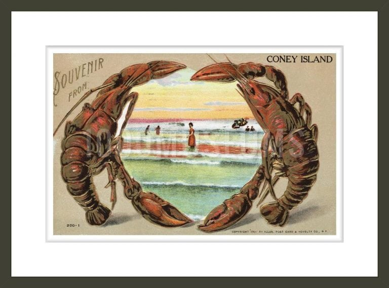Souvenir from Coney Island Postcard