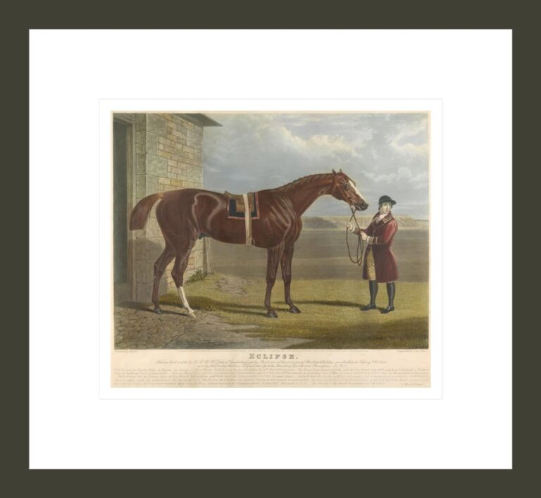 'Eclipse' / 'He was bred in 1764, by H.R.H. Wm. Cuke of Cumberland, got by Marsk, son of squirt, a son of Gartletts Childers, own brother to Flying Childers...