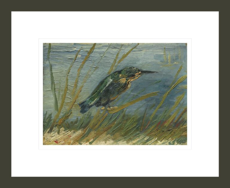 Kingfisher by the Waterside