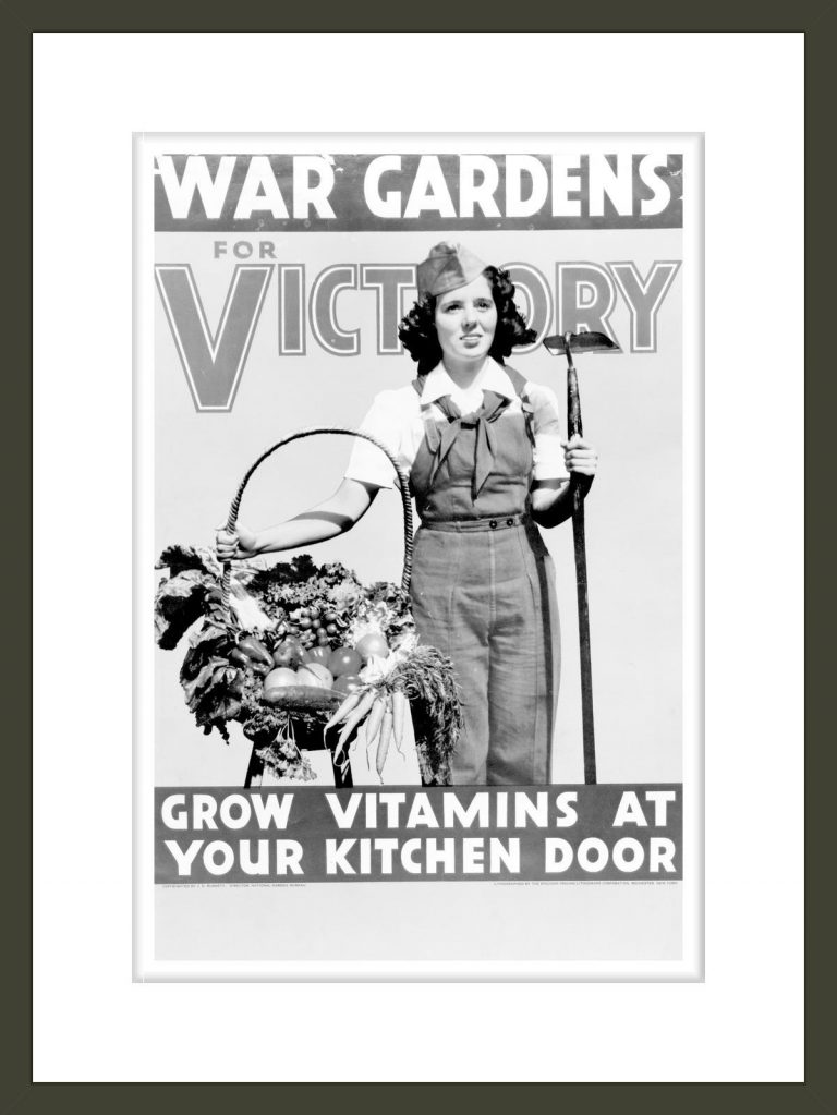 War gardens for victory--Grow vitamins at your kitchen door / lithographed by the Stecher-Traung Lithograph Corporation, Rochester, New York.
