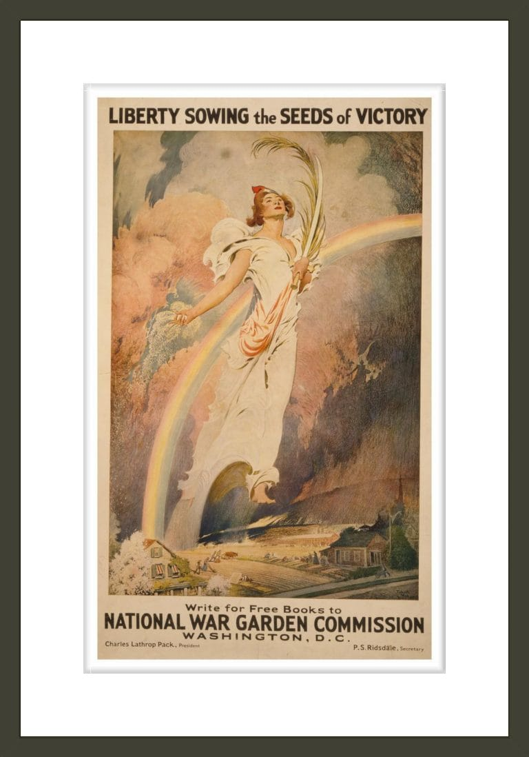 Liberty sowing the seeds of victory / Frank V. DuMond.