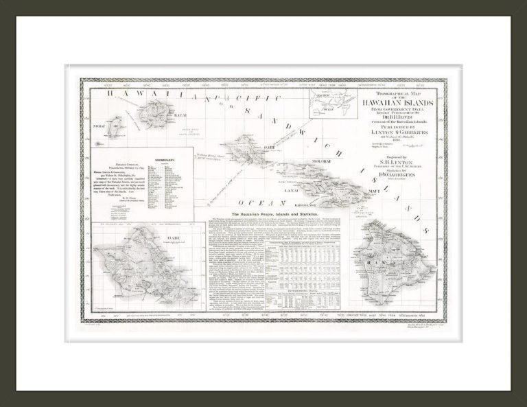 Topographical map of the Hawaiian Islands