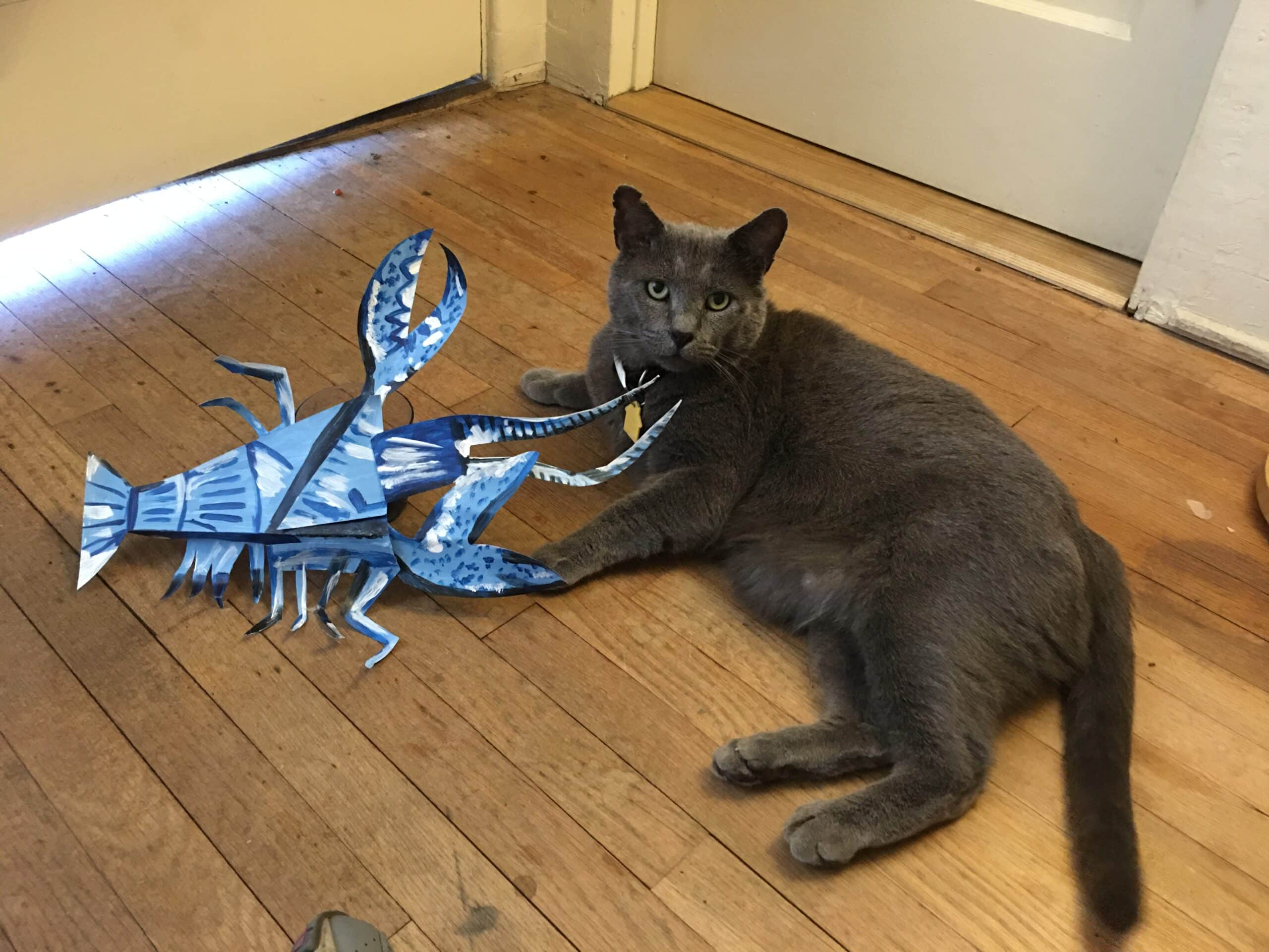 Lobster and Cat Re-creation