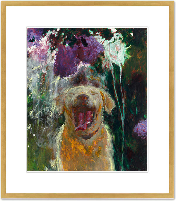 Dog under Lilacs in a Downpour
