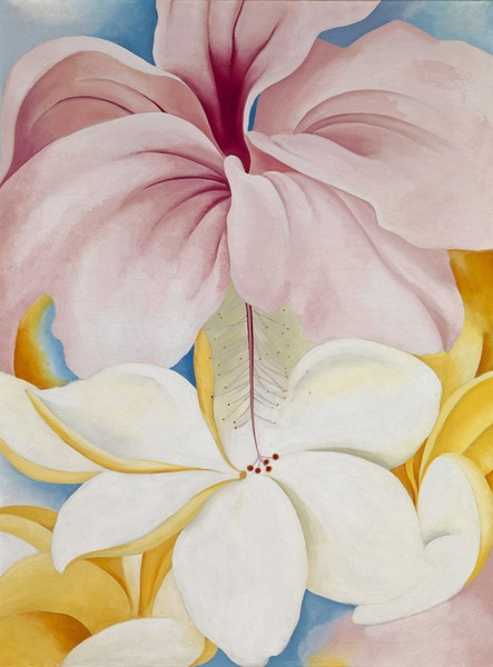 O'Keeffe Hibiscus With Plumeria